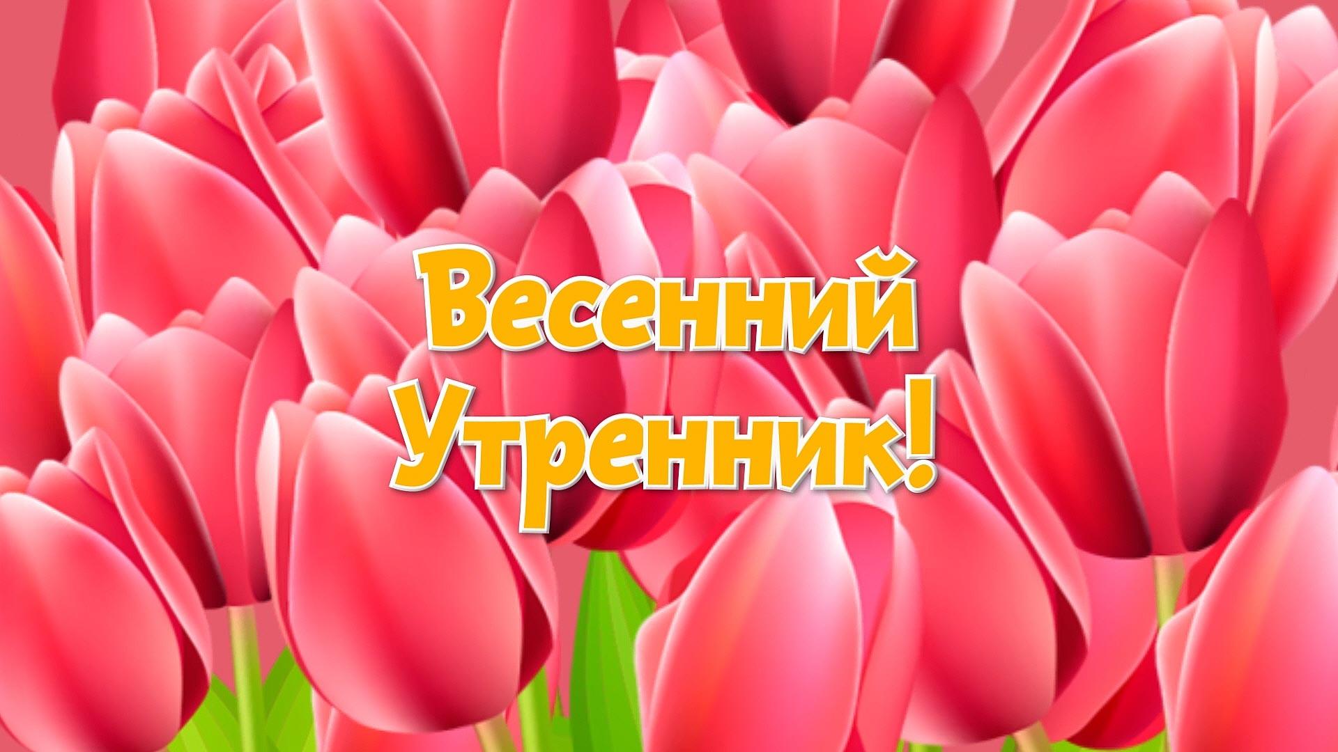 Видеосъемка выпускных и новогодних утренников Королев Мытищи Пушкино Ивантеевка Сергиев Посад